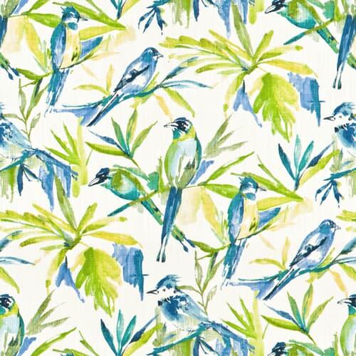 RENFREW 1 BLUEBIRD